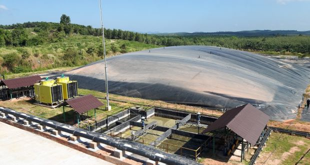 Biogas Project in Thailand